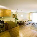 яркий дизайн гостиной кухни с перегородкой фото