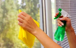 ТОП 7 отличный средств от плесени на окнах