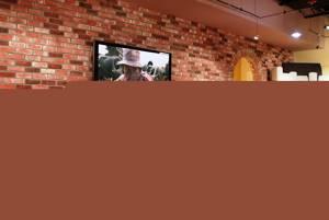 Кирпичная стена в стиле Лофт в зале